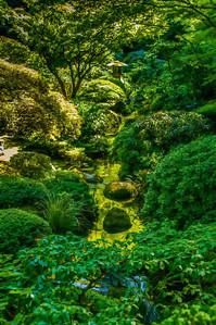 Stream   Japanese Garden   Portland